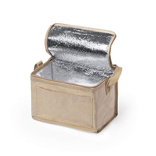 Bolsa isotérmica para nevera suave y resistente, ligera, ecológica, de papel reciclado, capacidad de 5 l, con correa para el hombro, ideal para senderismo, picnic, playa, transporte