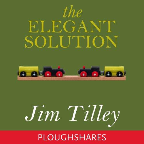 The Elegant Solution cover art