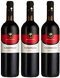 Cantine Due Palme Canonico Negroamaro - Salento Rosso IGT (3 x 0.75 l)