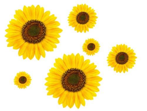 Sonnenblume-Aufkleber