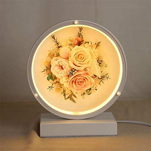 WHANG Valentinstag Ewiger Blumen-Glasschirm Finished Weihnachten Stil bunten LED-Nachtlampen-Tabellen-Lampen-Nachtlicht Kreatives Geschenk (Gray) (Color : Pink)