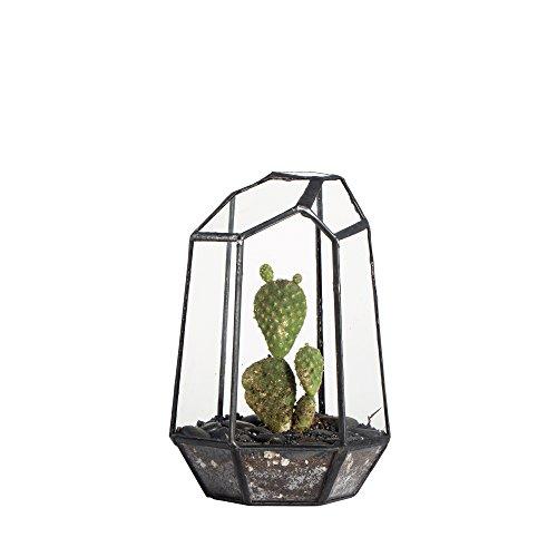 NCYP Vaso per fiori e piante grasse, Irregolare, altezza 16 cm, motivo geometrico, da tavolo, in vetro Piante non incluse