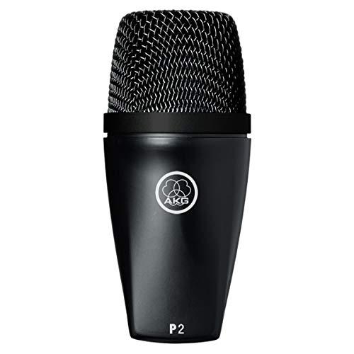 AKG Pro Audio P2 High-Performance Dynamic Bass Microphone