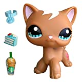 USALPS lps Shorthair Cat Brown with Blue Eyes with lps Accessories Cake Collar Drinks Kids Collectable Figures