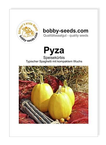 Pyza Kürbissamen von Bobby-Seeds, Portion