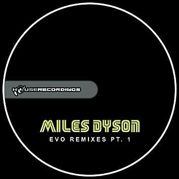 Evo Remixes Pt. 1