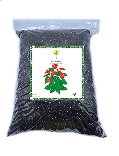 Anthurium Plant Planting Soil, Repot or Plant Anthurium Plants, Hand Blended in...