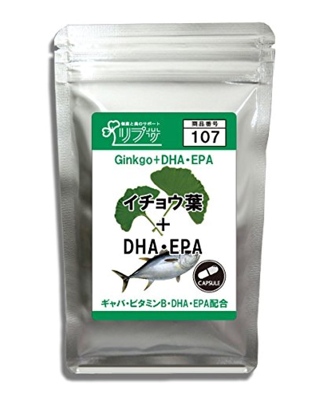イチョウ葉&DHA?EPA 約1か月分 C-107