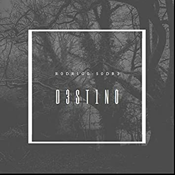 D3Stino