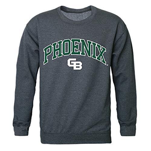 UWGB Wisconsin-Green Bay Phoenix NCAA Campus Crewneck Sweatshirt - Medium, Heather Charcoal