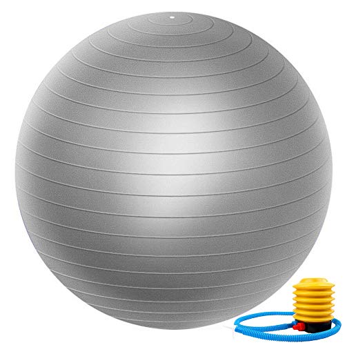 Zonstore Exercise Ball 65cm Extra Thick Yoga Ball Chair, Professional Grade Anti-Burst Balance & Stability Ball Supports 2000lbs with Quick Pump, Gray