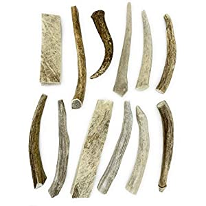 Deer Valley Chews Premium Deer Antler for Dogs – (Small 5-7 Inches, Bulk Pack) – Over 1lb of Dog Bones – Long Lasting Dog Treat for Teething and Chewing – Naturally Shed (12 Pack)
