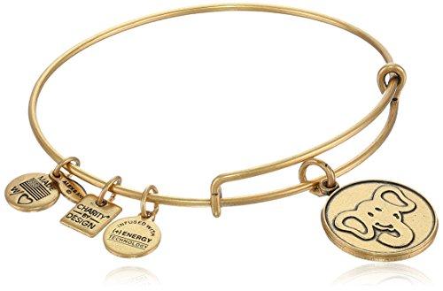 Alex and Ani 'Charity by Design' The Elephant Rafaelian Gold-Tone Expandable Wire Bangle Bracelet