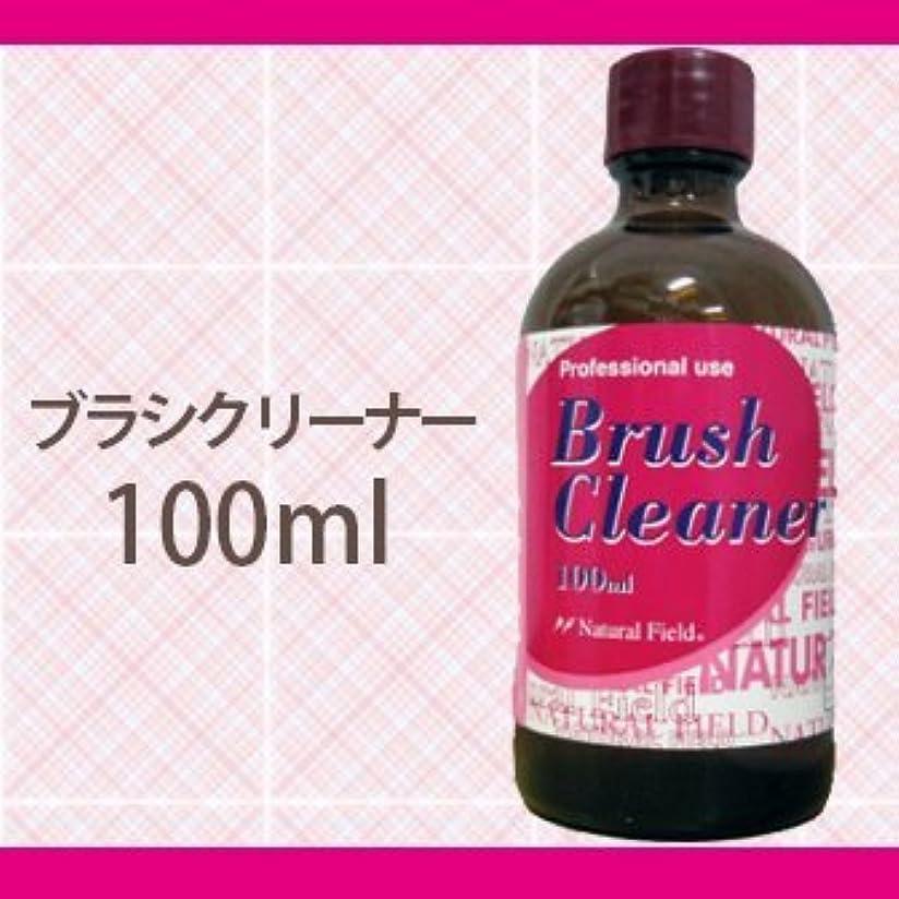 経歴大気すきNFS ブラシクリーナー 100ml