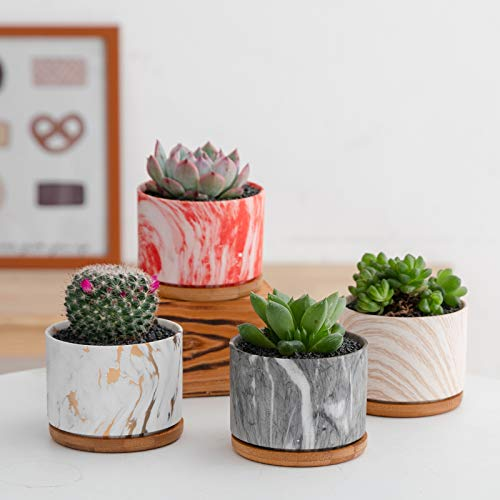 Welltop 9cm Cerámico Colección Suculento Maceta Cactus Flor Macetas Envase Plantas con Bandejas de Bambú Conjunto de 4