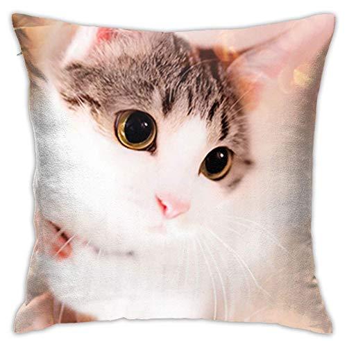 Xiangyang Cojines,Cushion Sofa Cute Kitty Cat Funda de Almohada Cuadrada, Moderna Funda de Almohada Decorativa, Adecuada para Decorar sofá, 45X45cm