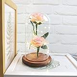 Alaso 'La Belle et la Bête Enchanted Rose,Rose Eternelle Romantique,Kit de Rose avec Guirlande Lumineuse LED,Idéal pour Saint Valentin,Fête des Mères,Anniversaire
