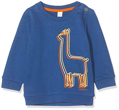 ESPRIT KIDS Baby-Jungen RP1502209 Sweatshirt, Blau (Indigo 460), (Herstellergröße: 62)