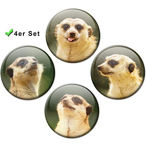 Kühlschrankmagnete Erdmännchen 4er Geschenk Set Magnete für Magnettafel Kinder lustig stark groß Ø 50 mm