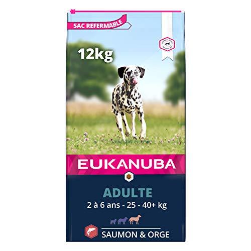 Eukanuba - Croquettes riches en Saumon et Orge pour Chiens Adultes Grande Race – Peau et Pelage sensibles - Glucosamine et L-carnitine - Sans OGM, arôme artificiel, colorant – 12 kg