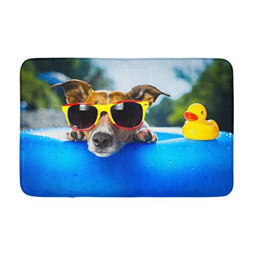 AoLismini Alfombra de baño Perro sobre colchón de Aire Azul en Agua refrescante Decoración de baño acogedora Alfombra de baño con Respaldo Antideslizante