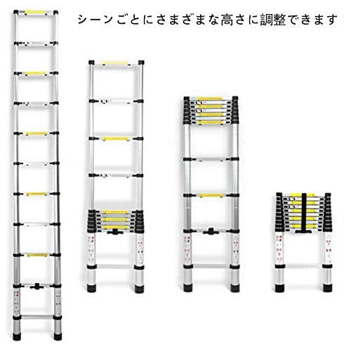 DayPlus『伸縮はしご最長3.8m』