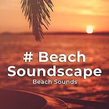 # Beach Soundscape