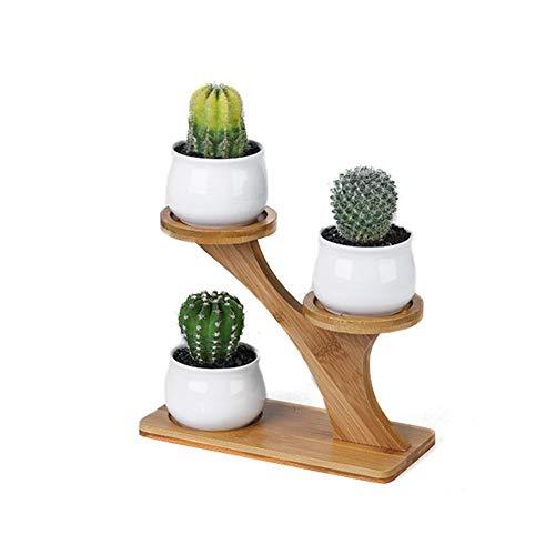 presentimer - Jarrón para Plantas suculentas con Estructura de bambú y zakka con combinación de cerámica para decoración de hogar y Oficina (no Incluye Plantas)