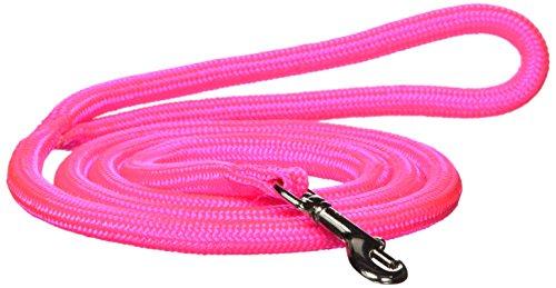 Hamilton 836HP 5/16Zoll von Vierfußgehstütze rund geflochten Nylon Hundeleine mit Drehgelenk, Snap, Hot Pink