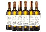 Collio DOCG Sauvignon Villa Folini 2019 6 bottiglie da 0,75 L