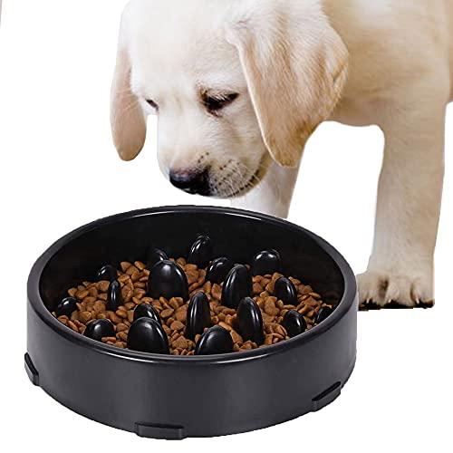 GWL Ciotola ad Alimentazione lenta, Mangiatoia Labirinto Cibo e Acqua per Cani interattiva e...