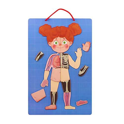 Puzzles Spielzeug Magnetpuzzle Kinder Lernspielzeug Schüler 3-6 Multifunktionale Jungen und Mädchen Intelligence Development Cognition Brainteaser