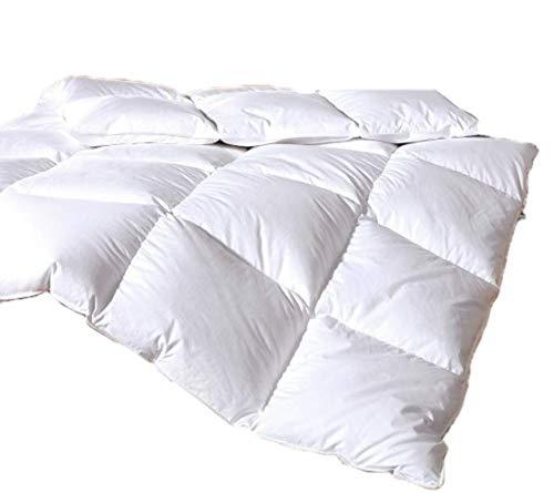 Vitalobett Canadian-Dreams Winter Daunendecke EXTRA WARM 155x220 Daunenbett 1380g GÄNSEDAUNEN Hochstegbett 8cm hohe Innenstege Wärmeklasse 4 (155x220 cm, weiß)