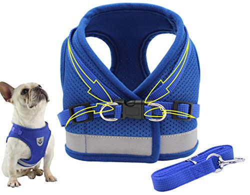 Dog Harness Vest Set Step in Puppy Vest Harness Leash Soft Mesh No Choke for Large Medium Pets Blue M
