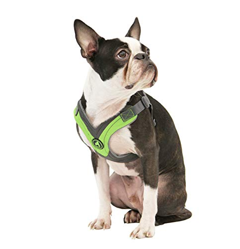 Gooby - Trekking Harness, Small Dog Fleece Lined Harness with Memory Foam Padding, Green, Large