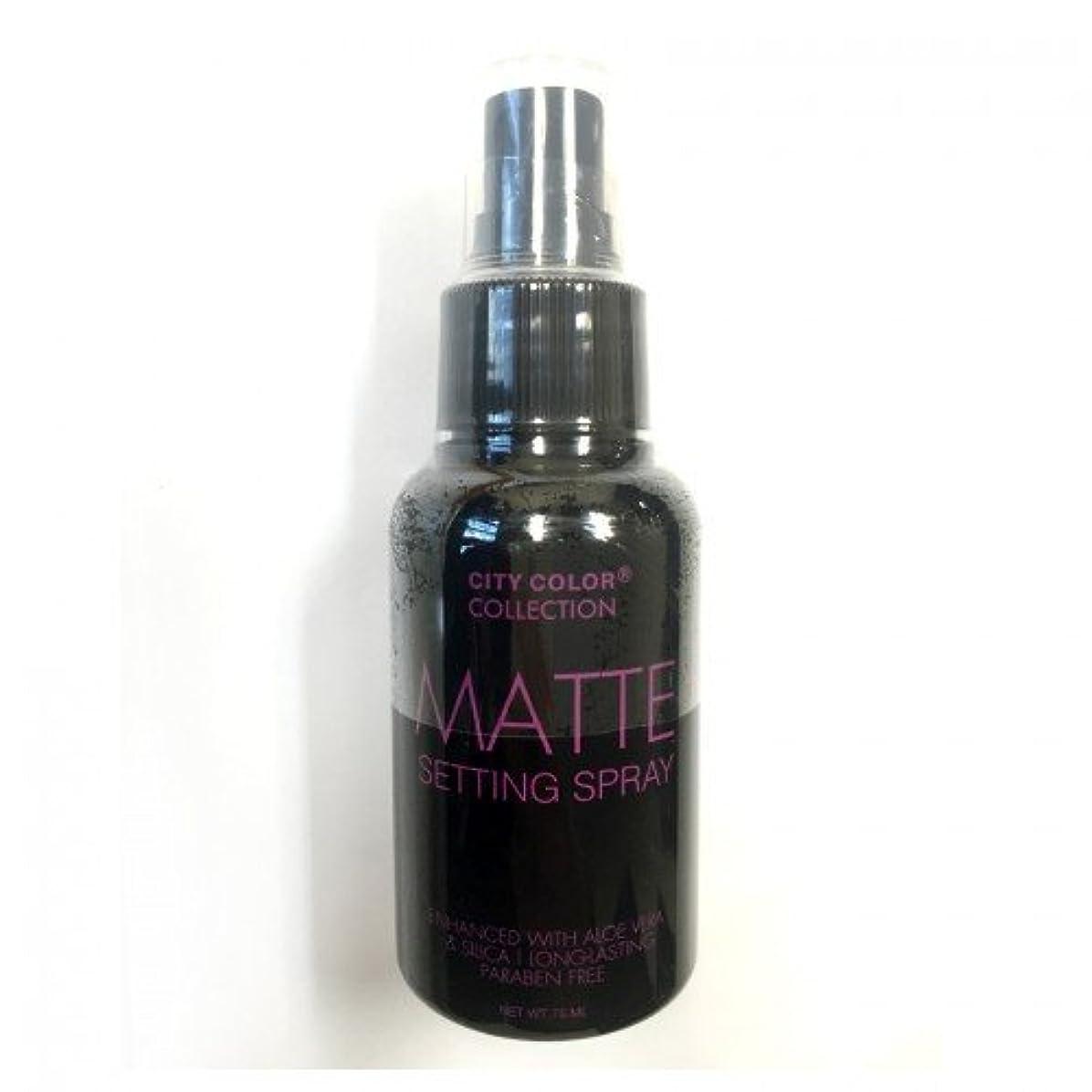 中動的阻害する(3 Pack) CITY COLOR Matte Setting Spray (並行輸入品)
