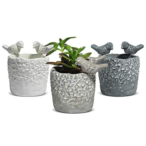 T4U Cement Succulent Pots 9CM with Removable Birds Pack of 3, Concrete Animal Handicrafts Flower Pot Grey Plant Planter Herbs Cactus Container Home Office Use Indoor Decoration