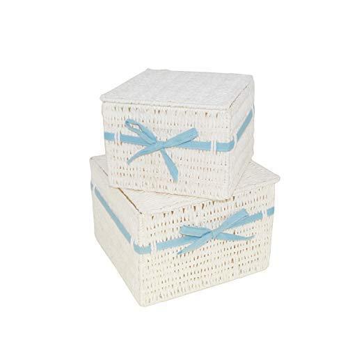 DRULINE 2er-Set Rattanbox Aufbewahrungskorb Aufbewahrungsbox Kunststoffkorb mit Deckel Mayablau (CP-1021)