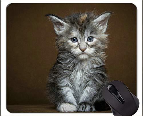 Spiel-Mausunterlage Gewohnheit, niedliche Katze des Kätzchens Rutschfeste Gummibasis Mousepad