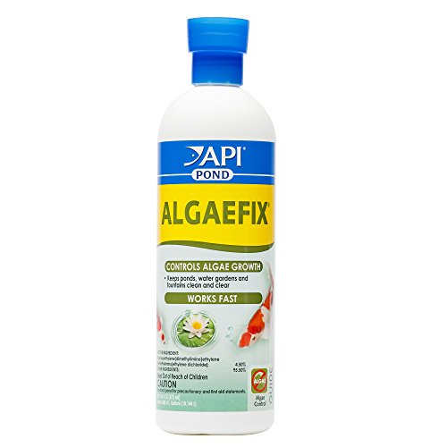 API POND ALGAEFIX Algae Control 16-Ounce Bottle (169B)