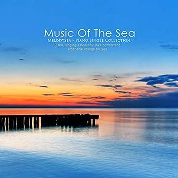 바다의 음악