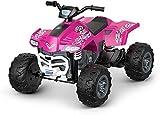 Power Wheels Racing ATV