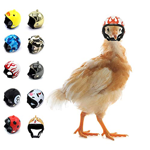 Genriq 10PCS Chicken Helmet - Chicken Bird Toy Head Protection Helmet Bird Hat Headwear Suitable for Parrot Small Chickens, Ducks and Other Poultry Funny Pet Safety Helmet Costumes Accessories