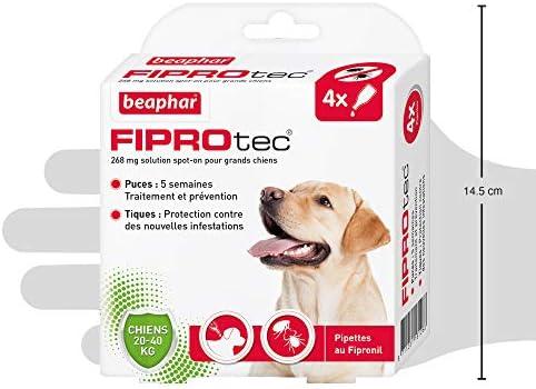 Beaphar – FIPROTEC 268 mg – Solution spot-on pour grands chiens (20-40 kg) – À base de Fipronil – Élimine les puces – Protège contre les infestations par tiques et puces – 4 pipettes de 2,68 ml