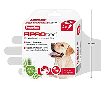 Beaphar – FIPROTEC 268 mg – Solution spot-on pour grands chiens (20-40 kg) – À base de Fipronil – Élimine les puces – Protège contre les infestations par tiques et puces – 4 pipettes de 2,68 ml