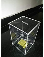 Lifuz Donation Box 6 * 4 Size 3 mm Thickness with Lock Pack of 1