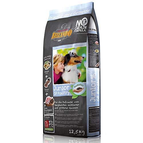 Belcando Junior GF Poultry [12,5 kg] getreidefreies Hundefutter | Trockenfutter ohne Getreide für Junge Hunde | Alleinfuttermittel für Hunde ab 4 Monaten