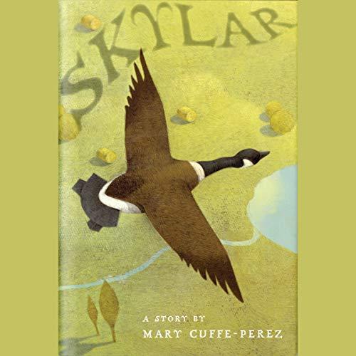 Skylar audiobook cover art