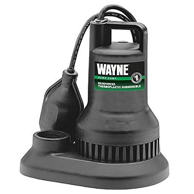 Wayne Wst30