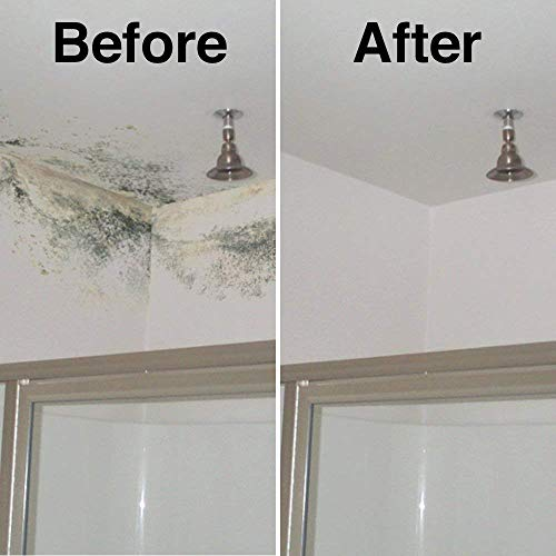 HG Mould Remover Foam Spray - The most effective black mould remover